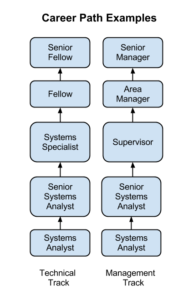 Comparing career paths in Information Systems