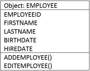 Schema for the employee object